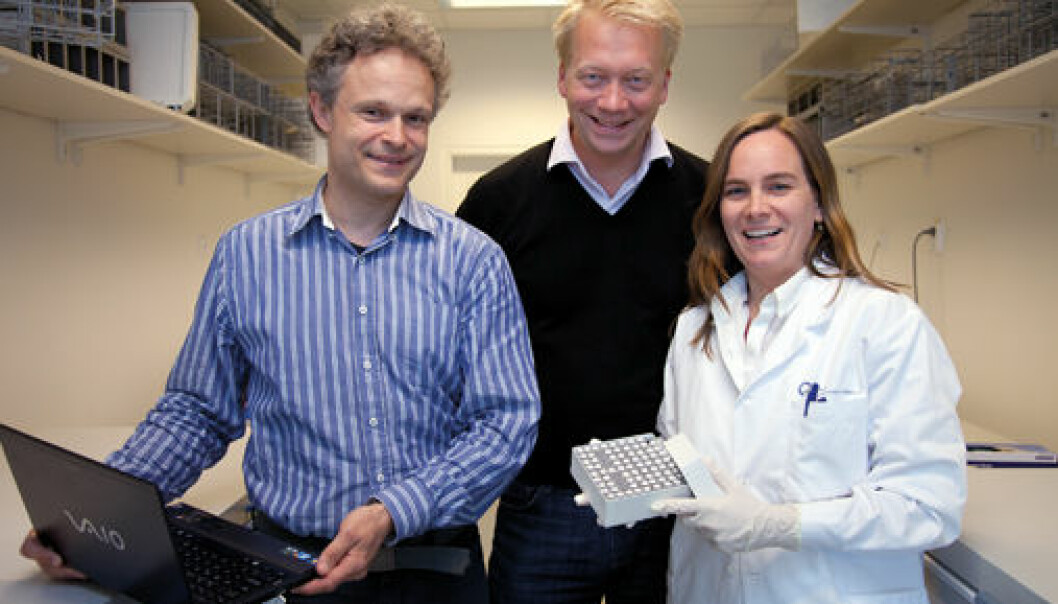 Oncologist Hans Kristian Vollan and pathologist Hege Russness collaborate closely with bioinformatician Ole Kristian Lingjærde (on the left) to find the systematic connection between changes in the cancer genome and how serious the illness is. (Photo: Yngve Vogt)