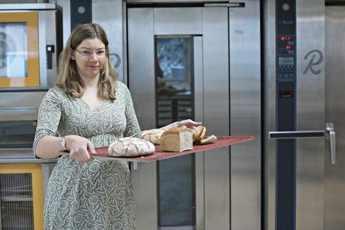 Det har vært en lang prosess for Nofima-forsker Anne Rieder og kollegaene hennes for å finne frem til den bakemetoden som gir de sunneste brødene. (Foto: Jon-Are Berg-Jacobsen, Nofima)