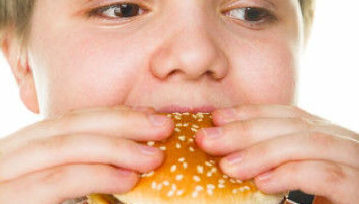 Obesity risks for only children