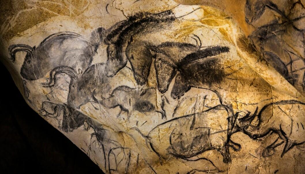 Chauvet-grotten ble oppdaget i 1994 og inneholder de eldste figurative hulemaleriene vi kjenner til i verden. De imponerende kunstverkene ble lagd 25 000 år før istiden tok slutt.  (Foto: Det franske kulturdepartementet)