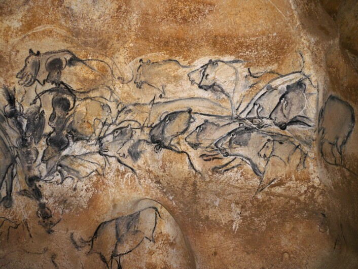 De 36 000 år gamle kunstverkene viser at steinalderfolkene mestret å male bilder som imponerer også i dag. Bildene som ble malt 25 000 år før istiden tok slutt, minner i dag kanskje aller mest om godt utført tegneseriekunst.