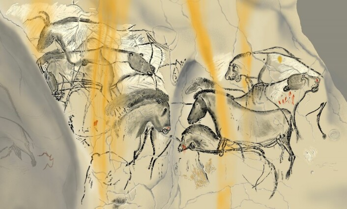 I alt 13 ulike dyrearter er avbildet på veggene i Chauvet-grotten.