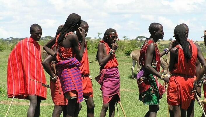 The Maasai keep healthy despite a high-fat diet
