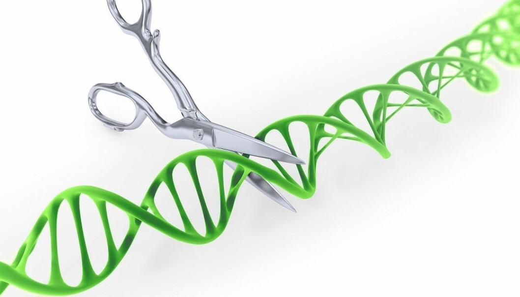 HIV utmanøvrerer CRISPR igjen