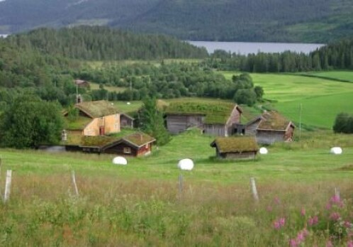 Updated estimate for nitrogen losses in agriculture