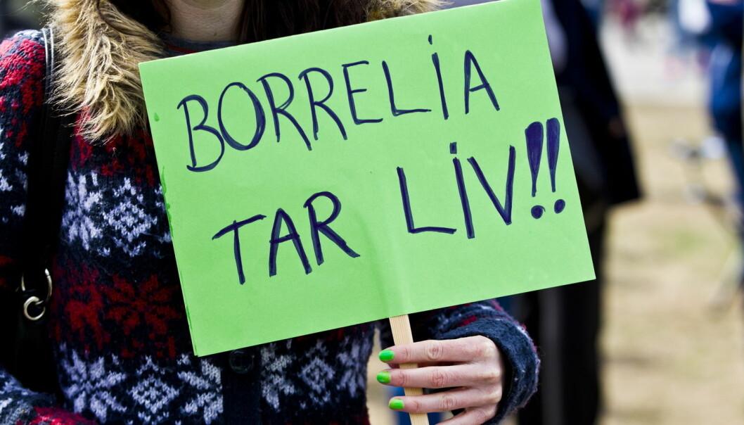 Mange har hevdet at de har sykdommen borreliose uten at den er blitt avdekket av helsevesenet. Bildet er fra en demonstrasjon for bedre diagnose og behandling utenfor stortinget i oktober 213.  (Foto: NTB Scanpix)