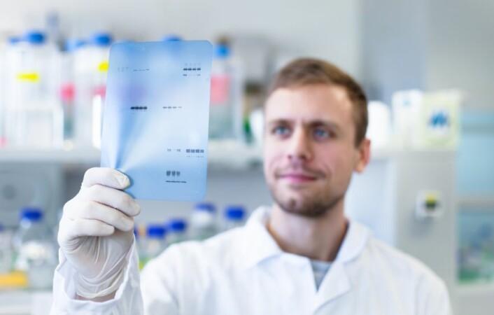 Flere av de tyske privatklinikkene bruker såkalte western blot-tester. Disse har en tendens til å feilaktig vise at folk har borrelia, mener forskere. (Illustrasjonsfoto: PolakPhoto/Shutterstock/NTB scanpix.)