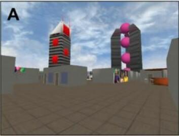 Dette bildet viser det virtuelle kontorlandskapet som forsøkspersonene skulle orientere seg i. (Foto: (Grafikk: Asta Håberg))