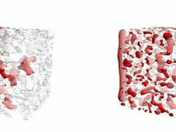 The 3D simulation on the left shows the distribution and movement of CO2 in sandstone capillaries under stationary flow conditions. On the right, non-stationary flow conditions (which occur near an injection well) are simulated. (Illustration: Numerical Rocks AS )