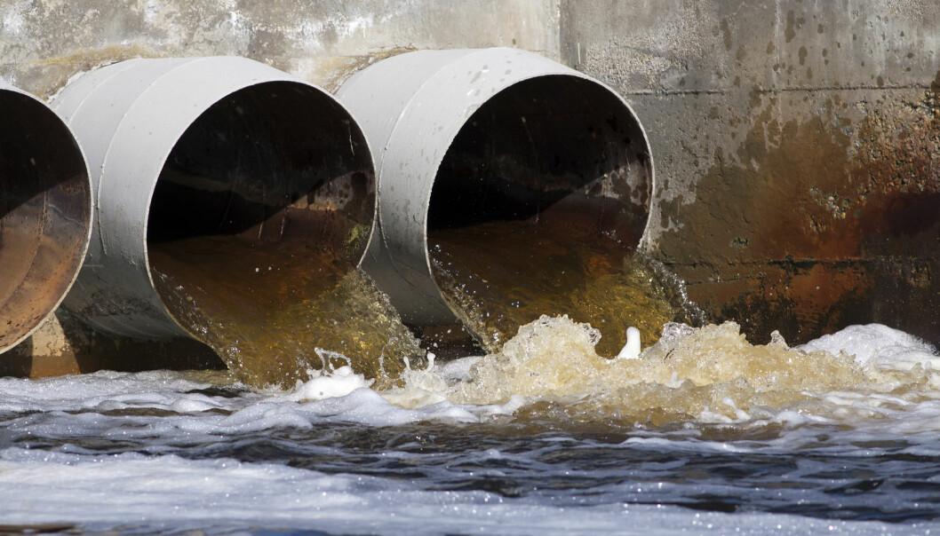 Over hele verden går verdifull fosfor til spille gjennom kloakksystemet. (Foto: Shutterstock / NTB Scanpix)