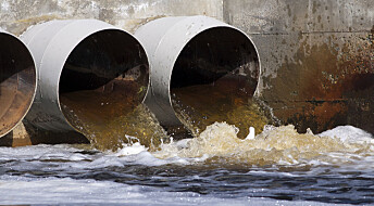 Forskeren forteller: Skyller verdifull fosfor rett ned i do