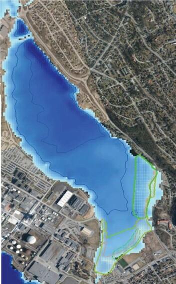 Registrerte naturtyper i Direktoratet for naturforvaltnings naturbase er vist i kartet som henholdsvis skravert rødt felt for bløtbunnsområde og skravert grønt felt for undervannsvegetasjon. (Foto: (Kart: Fra rapporten))