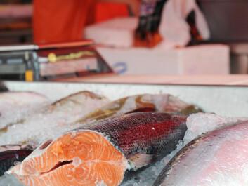 Norwegian salmon (Photo: Colourbox)