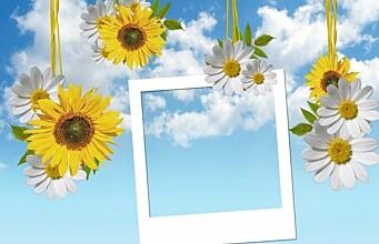 Let the sun organise your photos