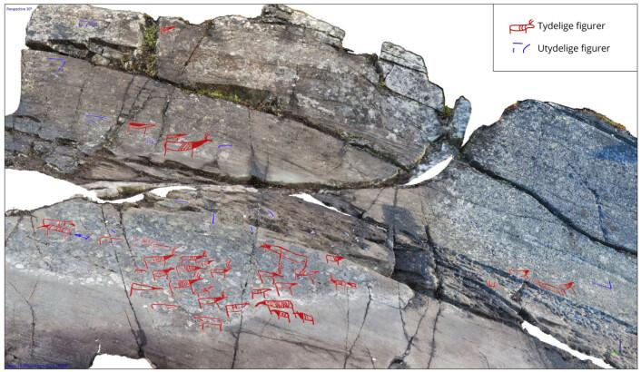 Digitalisert versjon av bergkunstfeltet. Enkelte figurer helt til høyre viser at reinfigurer trolig også var avbildet også på det eroderte partiet, slik at reinflokken opprinnelig var større i utstrekning. (Foto: (Modell: Erik Kjellman, Tromsø Museum – Universitetsmuseet))