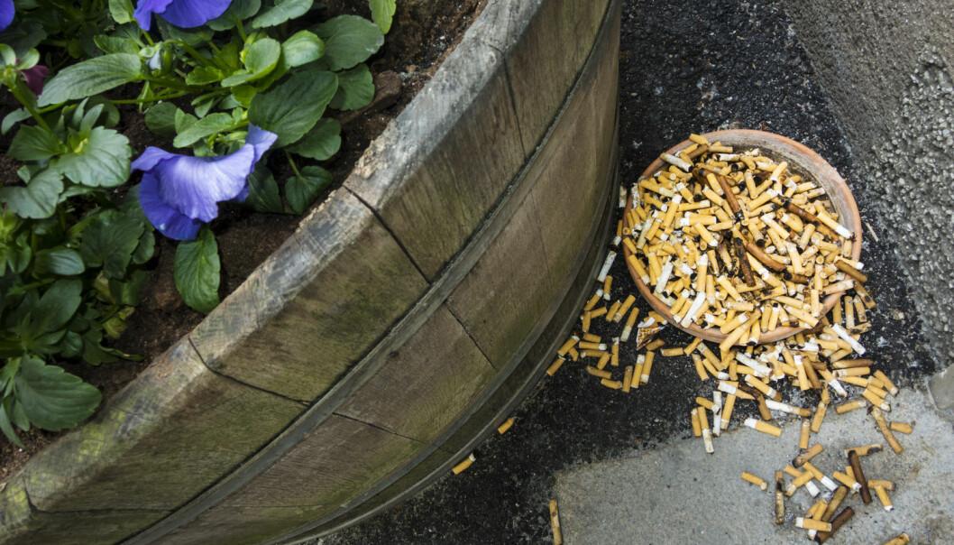 Forskere har brukt big data og funnet at den store røykesluttdagen fører til en stor økning av folks engasjement for temaet på Twitter og søking etter informasjon på Wikipedia og Google.  (Foto: Bildhuset, NTB Scanpix)