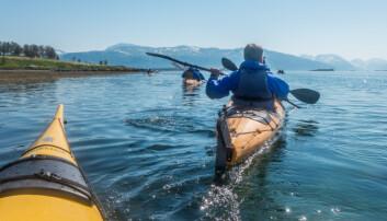 Det er et stort potensial for å få flere utenlandske turister til Norge hvis reiselivsbransjen tilbyr flere pakker, ifølge en rapport fra Høgskolen i Sørøst-Norge og Agderforskning. Her fra en utflukt i tilknytning til Hurtigruten.  (Foto: Hurtigruten)