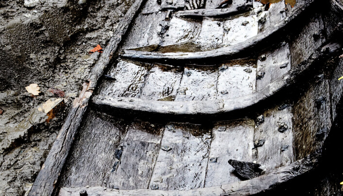 Denmark's only medieval rowboat dated