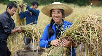 Samarbeider om bærekraftig matproduksjon i Kina