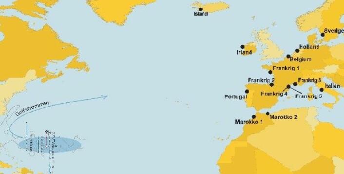 Kartet viser hvor europeisk ål drar for å gyte. (Foto: (Illustrasjon: Line Reeh og Peter Bondo Christensen))
