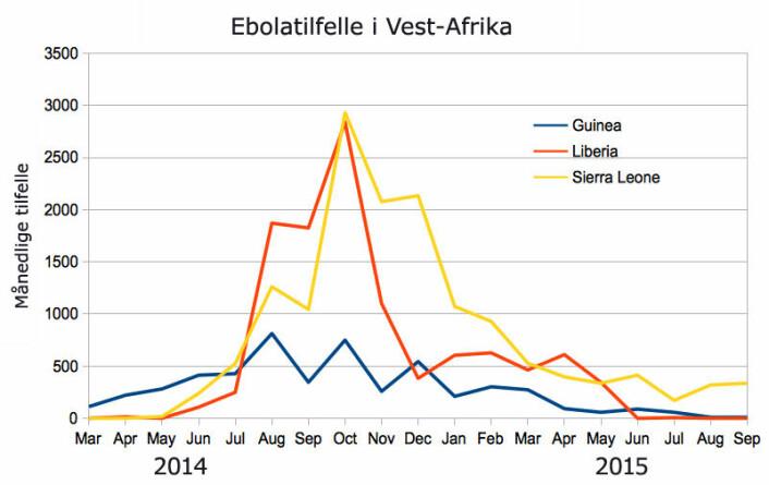 Selv om Guinea var landet der sykdommen oppstod rundt nyttår 2013, ble flere syke i nabolandene i sør, Liberia og Sierra Leone. (Foto: (Figur: Chris55, Creative Commons Attribution-Share Alike 4.0   International license.))