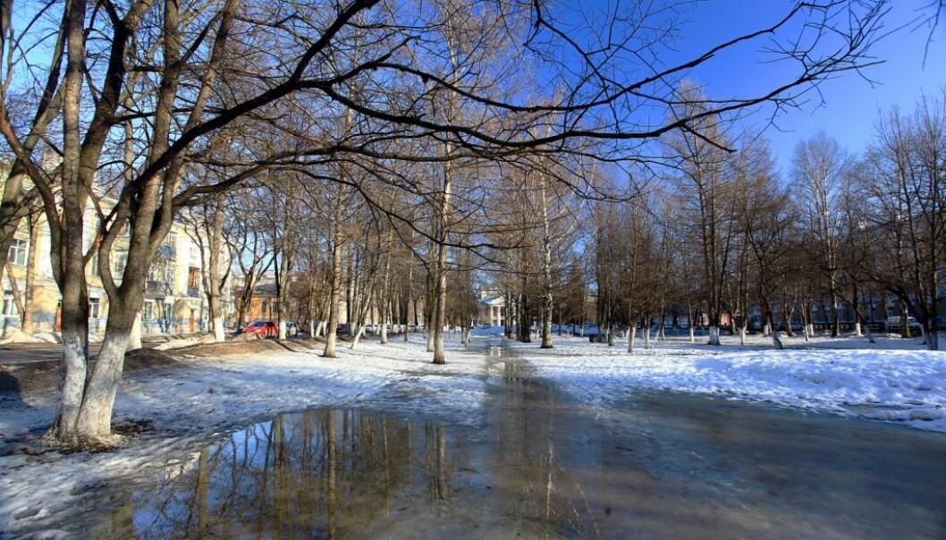 Vil det bli mindre og mindre snø i framtiden? (Foto: Kichigin/Shutterstock/NTB scanpix)