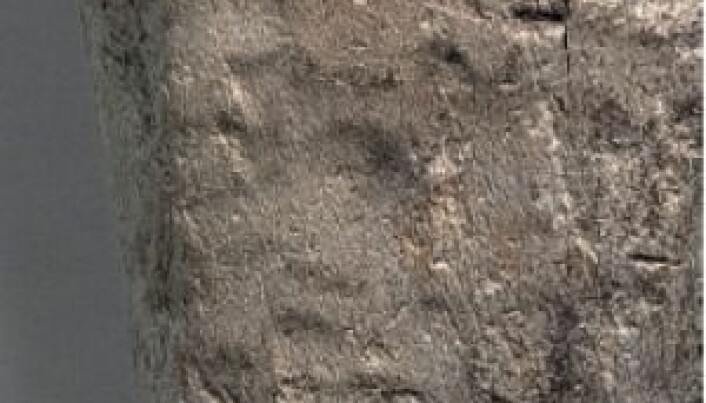 New technique reveals rare pattern on Stone Age adze