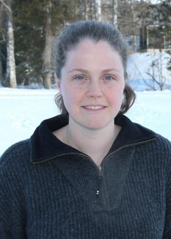 Stipendiat Alina Evans ved Høgskolen i Hedmark, avdeling for anvendt økologi og landbruksfag, har i sitt doktorgradsarbeid studert vintersøvnen hos brunbjørnen. (Foto: HiHe)