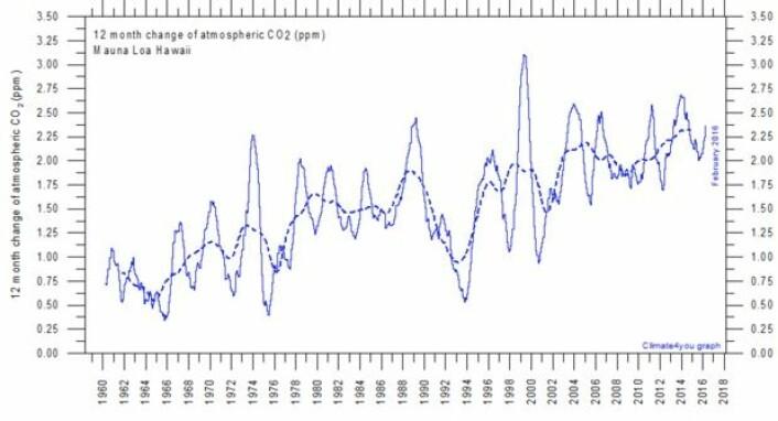 12-måneders endringen i atmosfærens CO2-innhold. (Bilde: Climate4you)