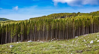 – Vi vil se store endringer i skogbruket