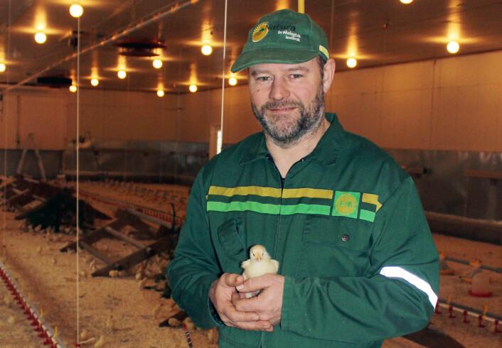 Gardbruker Kjell Frøyland har tro på at kyllinger som får variert kosthold og har god plass holder seg friskere enn de som står tett. (Foto: Privat)