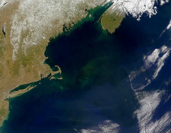 Georges Bank utenfor den amerikanske og kanadiske østkysten. Selve Georges Bank er den store undervannsformasjonen som du ser midt i bildet. (Foto: NASA)