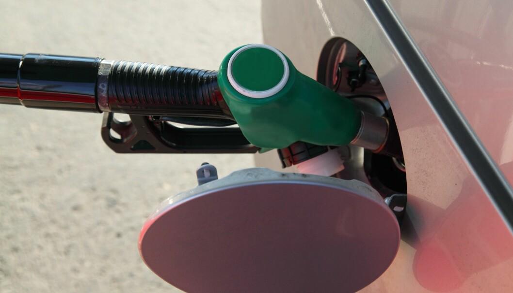 75-80 prosent av det biodrivstoffet som tilsettes i norsk drivstoff kommer fra produksjon av palmeolje. (Illustrasjonsfoto: Colourbox)