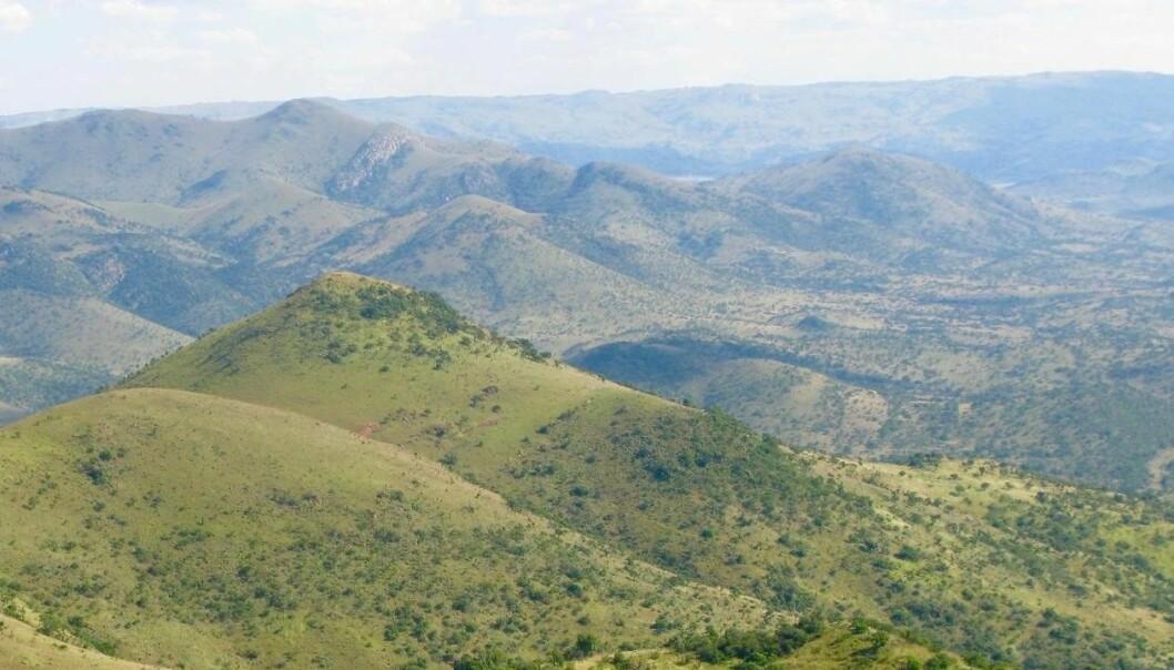 Dei fleste trur at jorda vart skapt under svært varme tilhøve. Nye funn i Barberton Greenstone Belt i Sør-Afrika skapar ein ny teori, med eit mykje kaldare klima ein tidlegare trudd. (Foto: Harald Furnes)