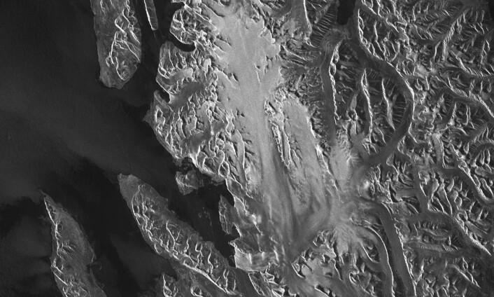 Radarbilde over Ny Ålesund på Spitsbergen, tatt fra Sentinel-1. De øvre delene av isbreen er hvite fordi radarsignalet trenger inn i snøen og reflekteres fra de mange krystallene nedover i det dype snølaget. Noen lavere deler av breen er også hvite fordi bresprekker reflekterer mer stråling tilbake enn glatt is. De lysere områdene på sjøen skyldes bølger. Gråtonene forteller om bølgehøyden og dermed indirekte vindstyrken. (Foto: Andreas Kääb/ESA)
