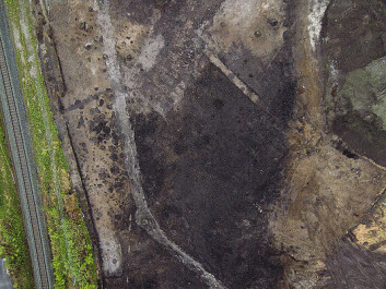 Aerial photo of the surveyed location. The dark areas are soil layers from the farm Vik. (Photo: Kaare Grytting, NTNU University Museum)