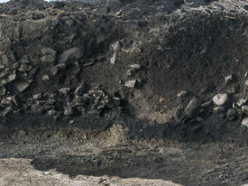 Profile through the soil layers. The layers of rock is cooking stones. (Photo: Åge Hojem, NTNU University Museum)