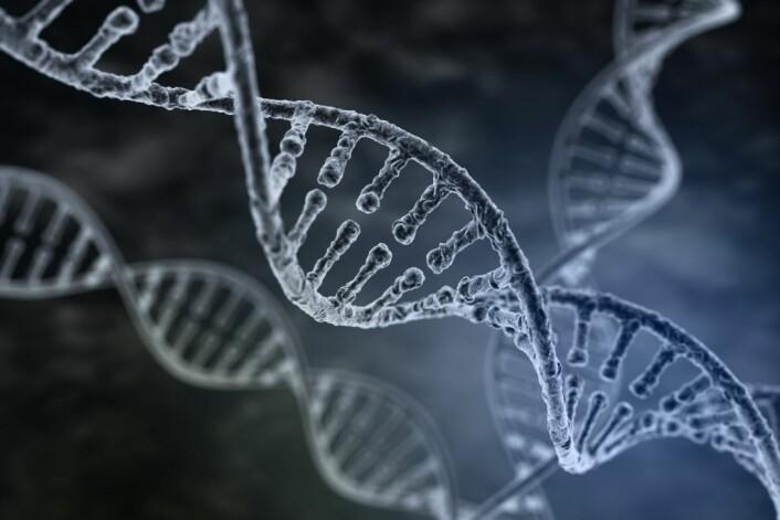 En effektiv og billig teknologi for å endre på genene våre er i frammarsj. Men hvordan virker egentlig teknologien? (Foto: (Illustrasjon: Tatiana Shepeleva/Shutterstock/NTB scanpix))