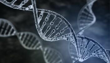 Har genredigert menneske-embryoer i USA