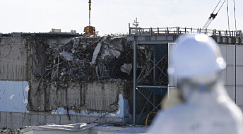 Hvor radioaktiv er fisken etter atomulykken i Japan?