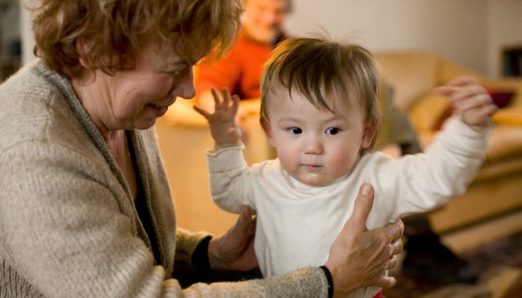 Bestemødre som fortsatt har foreldre i live, er også de mest aktive overfor barnebarna, viser ny forskning. (Foto: Mikkel Østergaard, Scanpix Denmark, NTB scanpix)