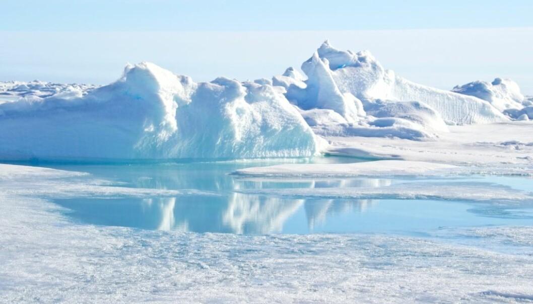 Rett før nyttår steg temperaturen på nordpolen til rundt 0 grader. Det er 30 grader varmere enn normalt på denne tiden av året.  (Foto: Christopher Wood/Shutterstock/NTB scanpix)