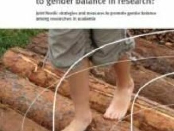 """The report """"The Nordic region - a step closer to gender balance in research?"""
