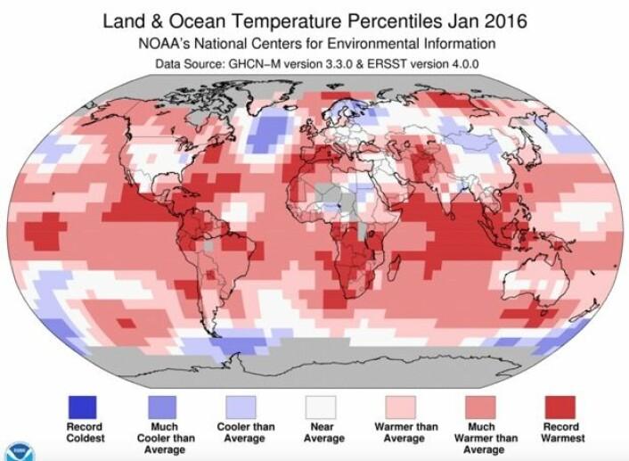 Rekordvarmt mange steder i verden i januar, mens det var ganske kjølig hos oss, og i Nord-Atlanteren. (Bilde: NOAA)