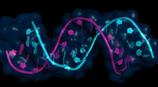 Mikro-RNA – kroppens dirigenter
