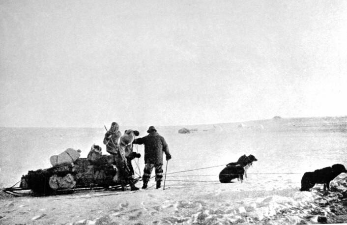 Sammen med sine fire ledsagere Olav Bjaaland, Helmer Hansen, Sverre Hassel og Oscar Wisting når Roald Amundsen (39) som førstemann på Sydpolen - foran engelskmannen Robert Scott og hans ekspedisjon. (Foto: NTB scanpix)