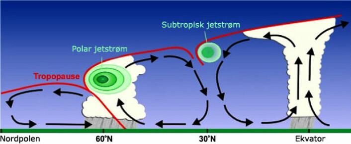 Jetstrømmen oppstår i grenseområdet mellom de store vindvirvlene på jorda. Her er tverrsnittet av jorda fra ekvator til nordpolen flatet ut. Den polare jetstrømmen går rundt kloden fra vest mot øst der den midtre vindvirvelen møter polarsonen til venstre. (Foto: (Figur: U.S. National Oceanic and Atmospheric Administration, bearbeidet av forskning.no))
