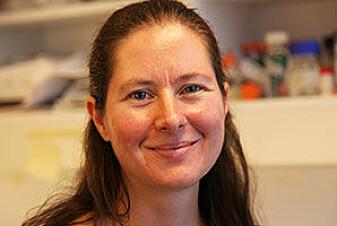Gunnveig Grødeland mener vi vil måtte gjøre grundige risikovurderinger når det gjelder bruken av adenovirus-vaksiner i fremtiden.
