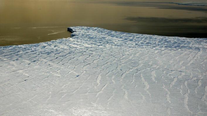 Isbremmen Ferrigno Ice Stream i Bellingshausenhavet i Vest-Antarktis sett i november 2011. Isbremmene holder tilbake isbreene inne på land. (Foto: Universitetet i Erlangen-Nürnberg/M. Braun)