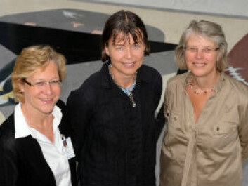 From left, Professor and Senior Consultant Hanne F. Harbo, Professor dr.med. Anne Spurkland and Senior Consultant and PhD Scholar Elisabeth Gulowsen Celius. (Photo: Gunnar F. Lothe, UiO)